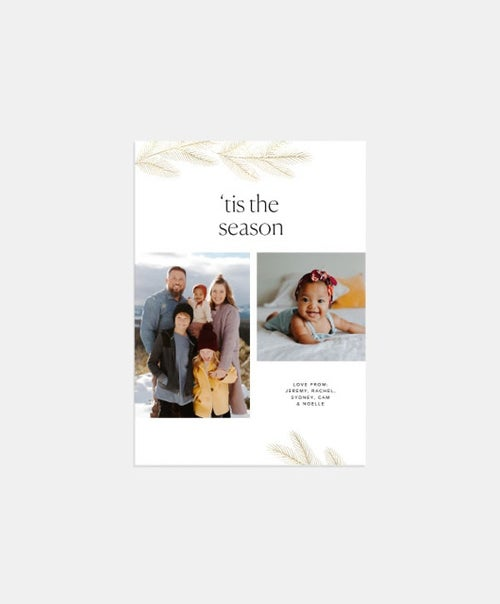 Bough Duo Holiday Card